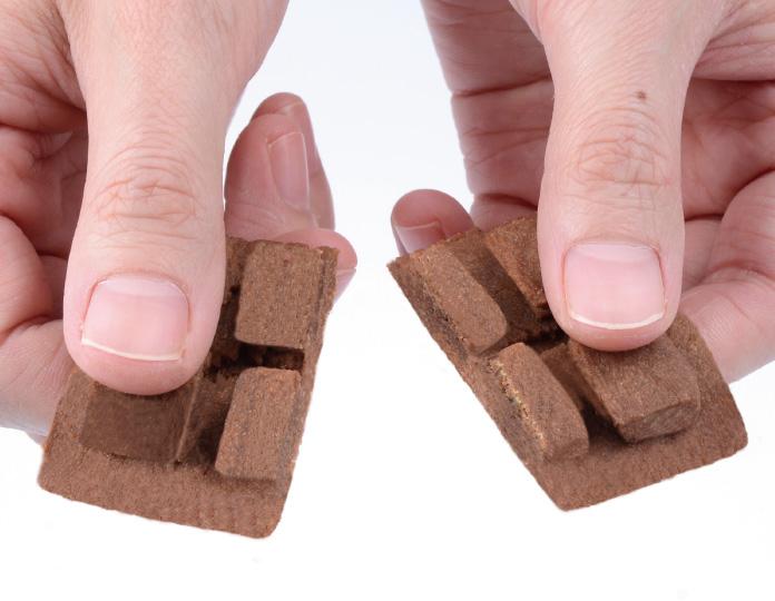 プレシャス チョコ クッキー